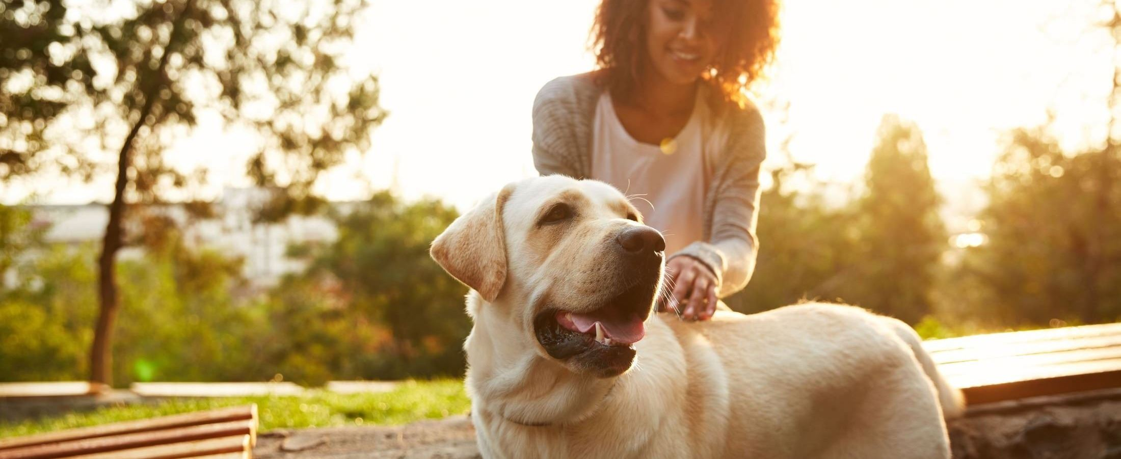 Animal Shelter & Adoption Center | Pasadena, TX