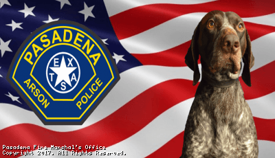 Fire Marshal K-9 (PNG)