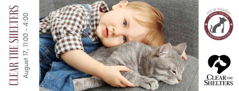 Clear the Shelters Little Boy with Cat FB Cover